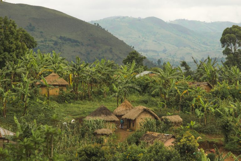 "in DRC: Indigenous pygmy communities displaced for ""conservation"" and community leader imprisoned"