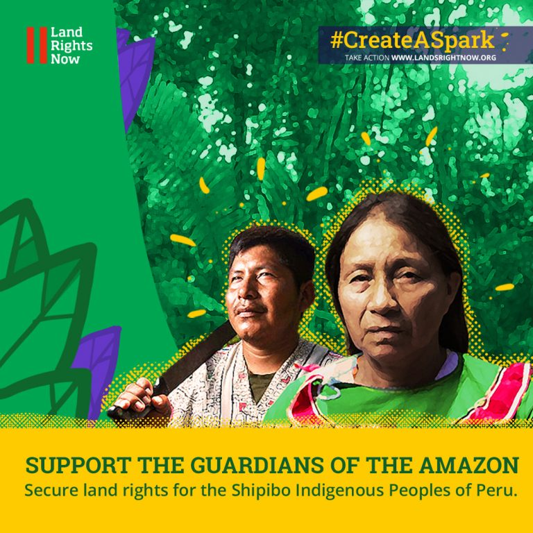 A light of hope for the Amazon in Peru