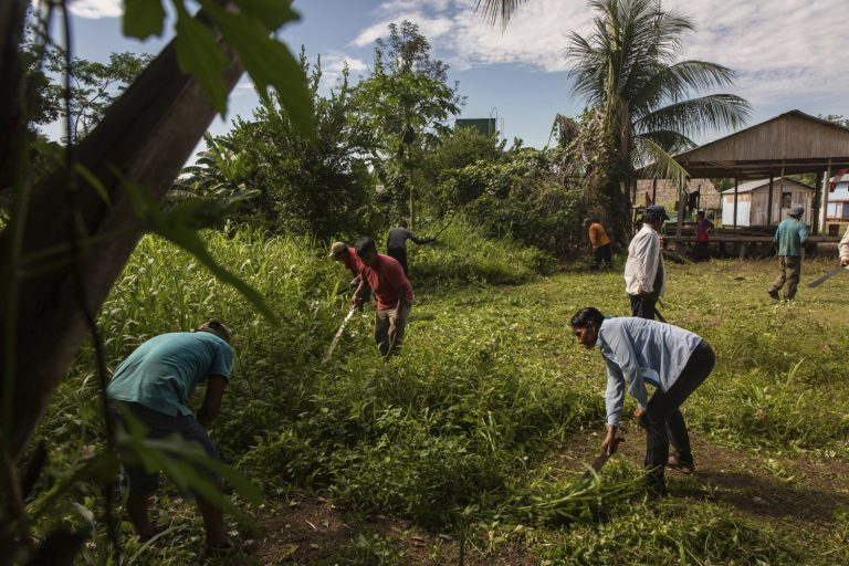 Land rights critical to prevent future pandemics say leading scientists